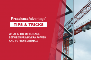 THE DIFFERENCE BETWEEN PRIMAVERA P6 WEB AND P6 PROFESSIONAL? – PRIMAVERA TIPS AND TRICKS